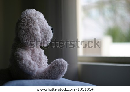 Teddy bear looking out window - stock photo