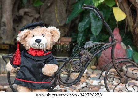 teddy bear with graduation gown on garden background - stock photo