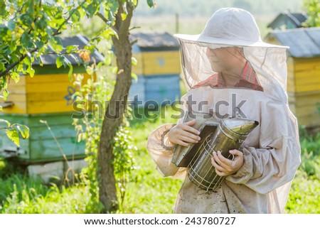 Teenage beekeeper and beehive on village bee yard - stock photo