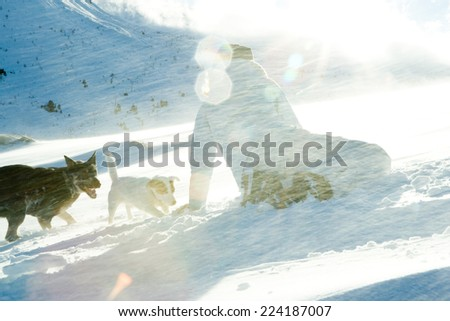 Teenage girl crouching in snow with two dogs, rear view - stock photo