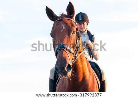 Teenage girl equestrian riding horseback. Vibrant summertime horizontal outdoors image. - stock photo