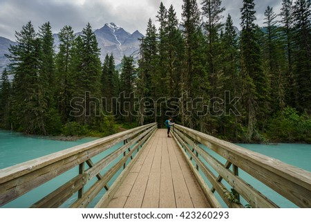 Teenage Girl on Foot Bridge along the Berg Lake Trail, Mount Robson Provincial Park, British Columbia - stock photo