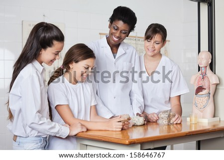 Teenage schoolgirls with female teacher analyzing stones at desk in classroom - stock photo