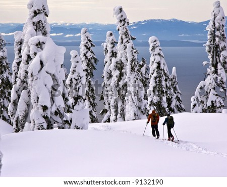 Telemark skiers - stock photo