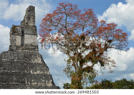 Temple I of the archeological site of Tikal in Guatemala - stock photo