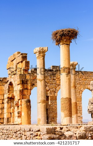Temple of Volubilis, an excavated Berber and Roman city in Morocco, ancient capital of the kingdom of Mauretania. UNESCO World Heritage - stock photo