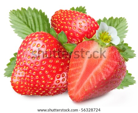 Tempting strawberries with leaves and flower. Isolated on a white background. - stock photo