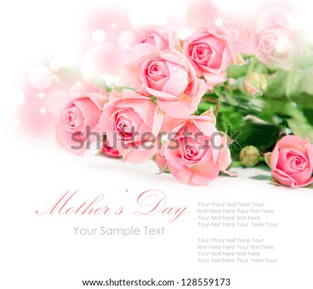 Tender pink roses isolated on white - stock photo