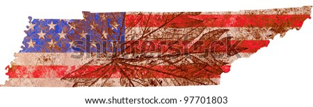 Tennessee state of the United States of America in grunge flag pattern isolated on white background - stock photo