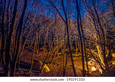 Tent illuminated with campfire light in night forest with blue sky - stock photo