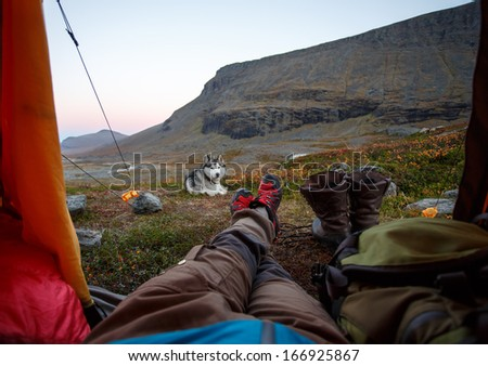 Tent Lookout with Siberian Husky - stock photo