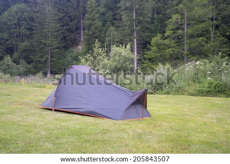tent on green with forest on the background - stock photo