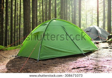 tents in the pine forest, rain and sun - stock photo