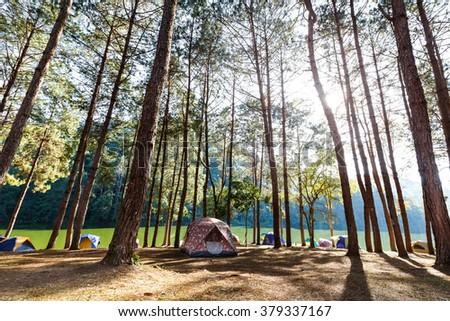 Tents of traveler in camping site near lake at Pang Ung (Pang Tong reservoir), Mae Hong Son province, Thailand - stock photo