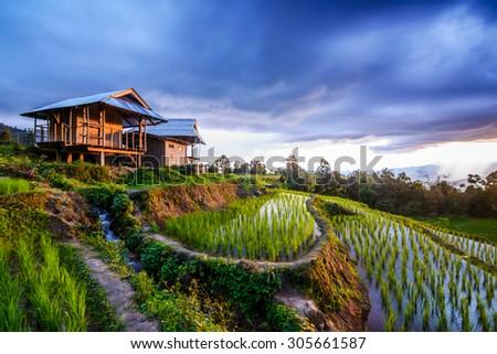 Terrace rice fields at Bann Bong Piang in Mae chaem, Chaing Mai, Thailand ( long light exposure shot) - stock photo