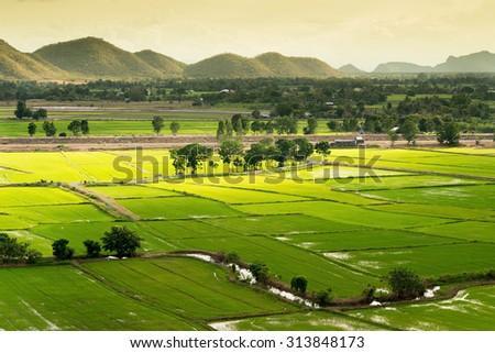 Terrace rice fields in Kanjanaburi, Thailand - stock photo