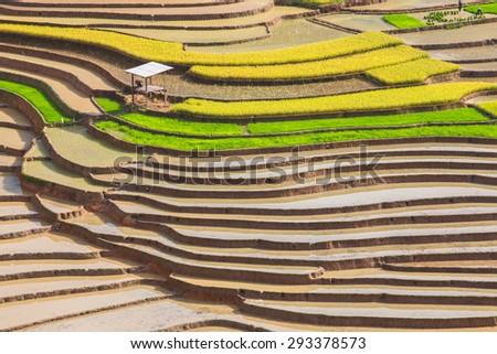 Terraced fields, Mu Cang Chai district, Yen Bai province, Vietnam - stock photo