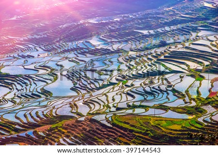 Terraced Rice Fields Scenery in Spring Water Season in South China at Sunset - stock photo