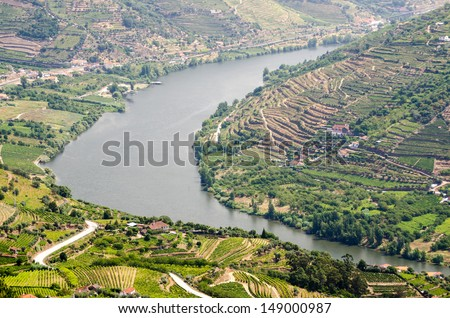 Terraced vineyards in Douro Valley, Alto Douro Wine Region in northern Portugal, officially designated by UNESCO as World Heritage Site - stock photo