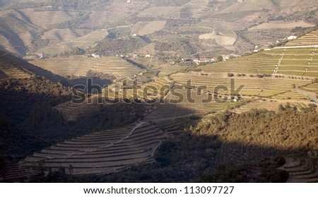 Terraced vineyards of Douro Valley, Portugal that illustrates the viticulture and heritage - stock photo