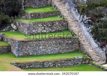 terraces and stairs to Machu Picchu - stock photo