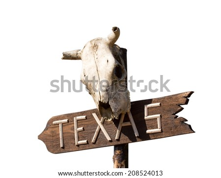 Texas sign with Old horse skull isolated on white - stock photo