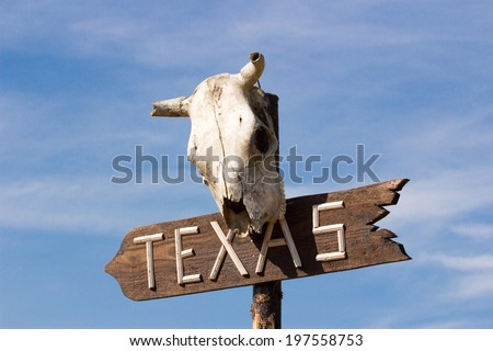 Texas sign with Old horse skull on sky background - stock photo