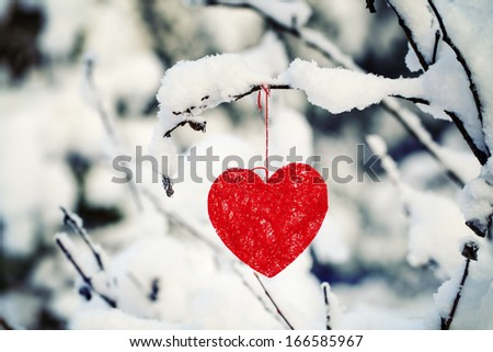 Textile heart hanged on a snow-covered forest bush - stock photo