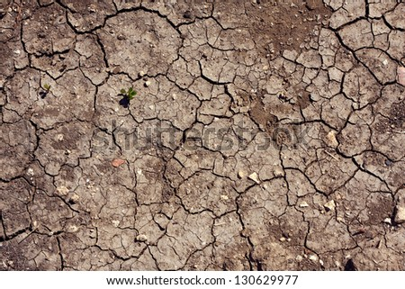 texture, background, brown, dirty cracked earth - stock photo