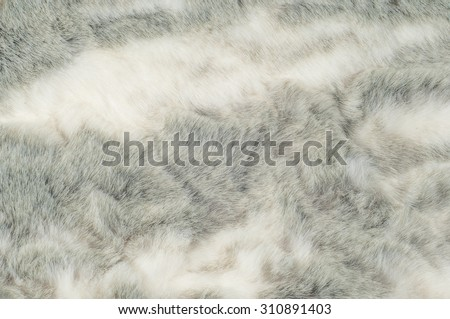 Texture. Fur. Rabbit. Photos made in the studio - stock photo