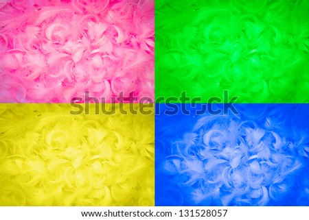 texture made with soft feathers in four colors - stock photo