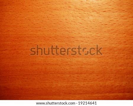 texture of beech wood - stock photo