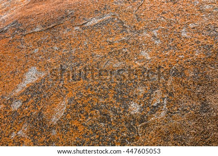 Texture of Golden yellow orange Lichen on rocks at Remarkable Rocks, natural rock formation at Flinders Chase National Park. One of Kangaroo Island's iconic landmarks, South Australia - stock photo