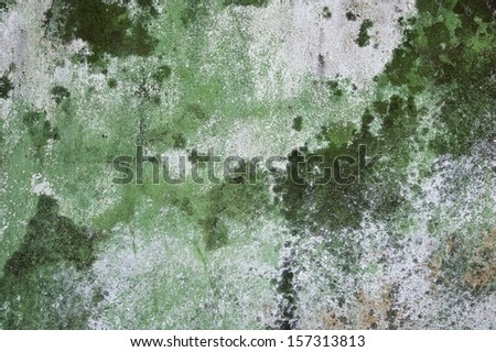 Texture of grey and green wall with mold and cracks - stock photo