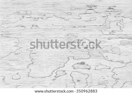 texture of mold on old wood - stock photo