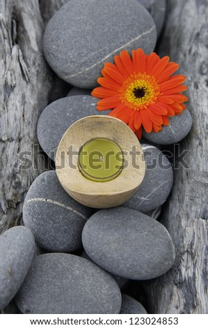 Texture Of nature driftwood wood with gerbera flower ,stones, candle - stock photo