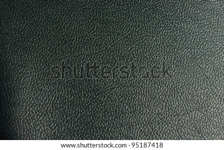 Texture of skin - stock photo