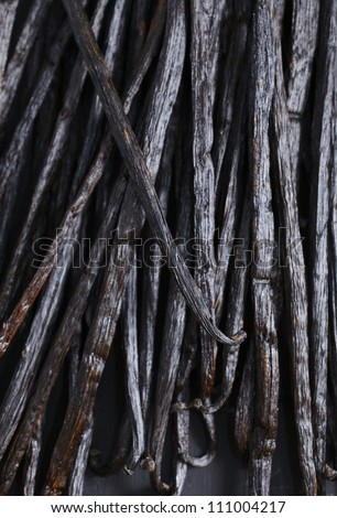 texture of Vanilla beans - stock photo