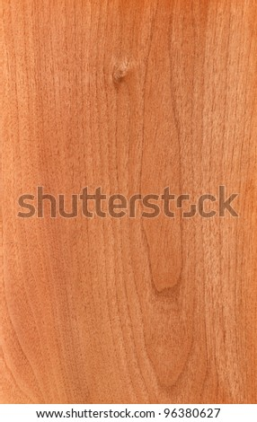 Texture of walnut (high-detailed wood texture series) - stock photo