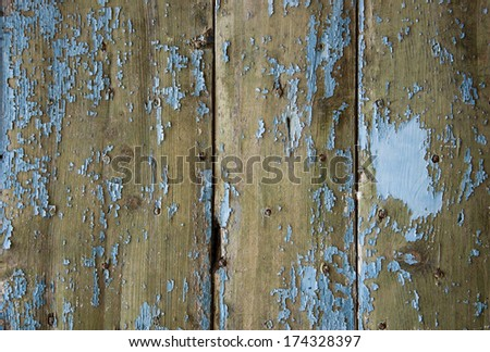 Texture of weathered wooden lining boards with peeling blue paint and rusty nail heads. - stock photo