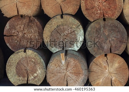 Texture of wood logs background with crack damage of aged annual rings. Pile of wood logs storage for industry.Tree stump background. - stock photo