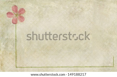 Textured floral background and design element - stock photo