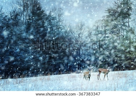 Textured image of two deer during a snowy stormy night. - stock photo