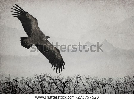 Textured old paper background with eagle in flight and mountain silhouettes in the background - stock photo