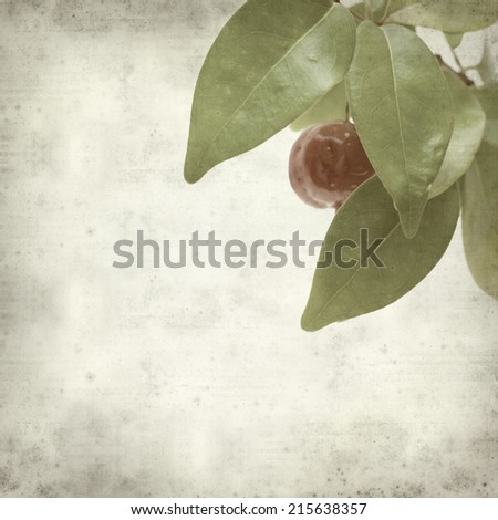 textured old paper background with Eugenia uniflora fruit - stock photo