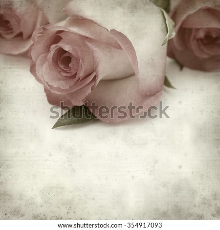 textured old paper background with gentle pink rose flower - stock photo