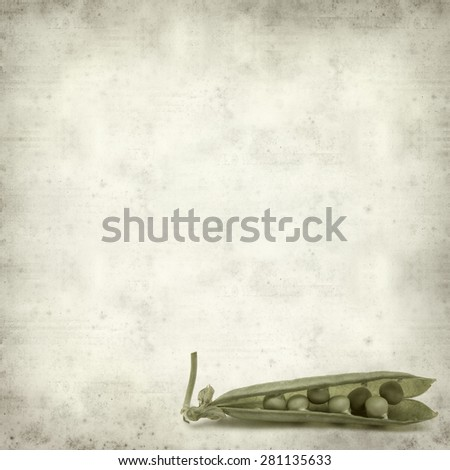 textured old paper background with open pea pod - stock photo