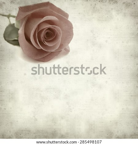 textured old paper background with pale pink rose - stock photo