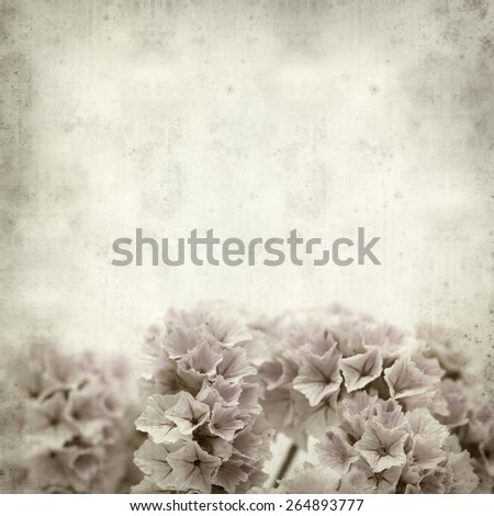 textured old paper background with small pale Limonium flowers - stock photo