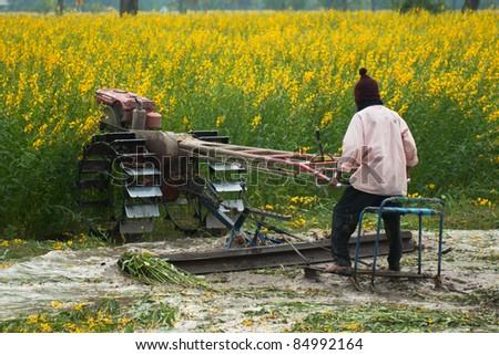 Thai farmer on small  tractor - stock photo